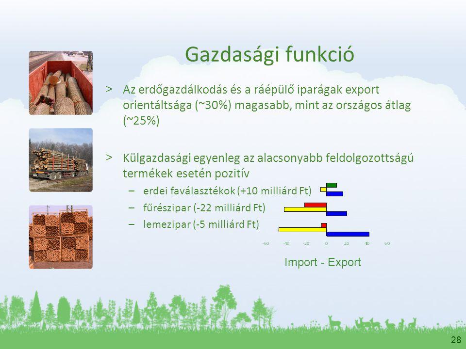 28 Gazdasági funkció > Az erdőgazdálkodás és a ráépülő iparágak export orientáltsága (~30%) magasabb, mint az országos átlag (~25%) > Külgazdasági egy