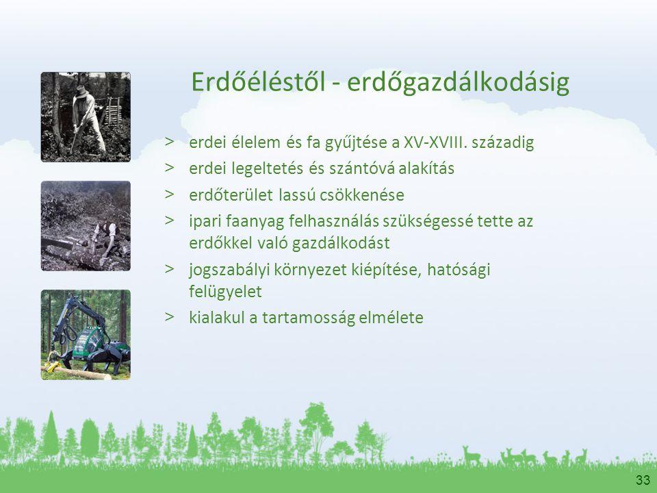 33 Erdőéléstől - erdőgazdálkodásig > erdei élelem és fa gyűjtése a XV-XVIII. századig > erdei legeltetés és szántóvá alakítás > erdőterület lassú csök