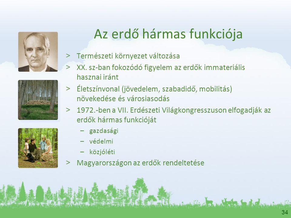 34 Az erdő hármas funkciója > Természeti környezet változása > XX. sz-ban fokozódó figyelem az erdők immateriális hasznai iránt > Életszínvonal (jöved