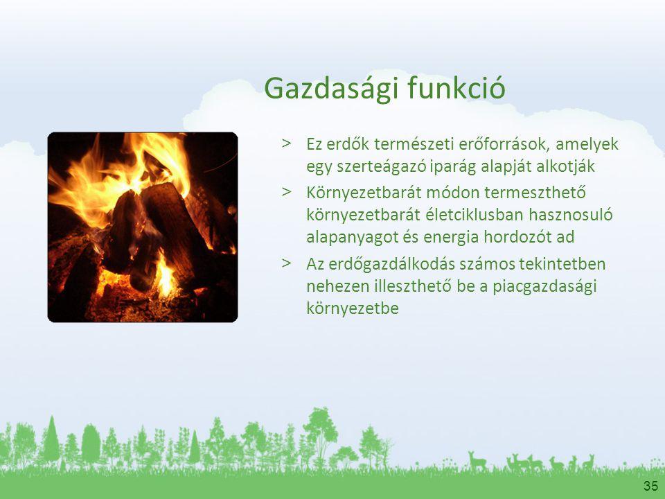 35 Gazdasági funkció > Ez erdők természeti erőforrások, amelyek egy szerteágazó iparág alapját alkotják > Környezetbarát módon termeszthető környezetb