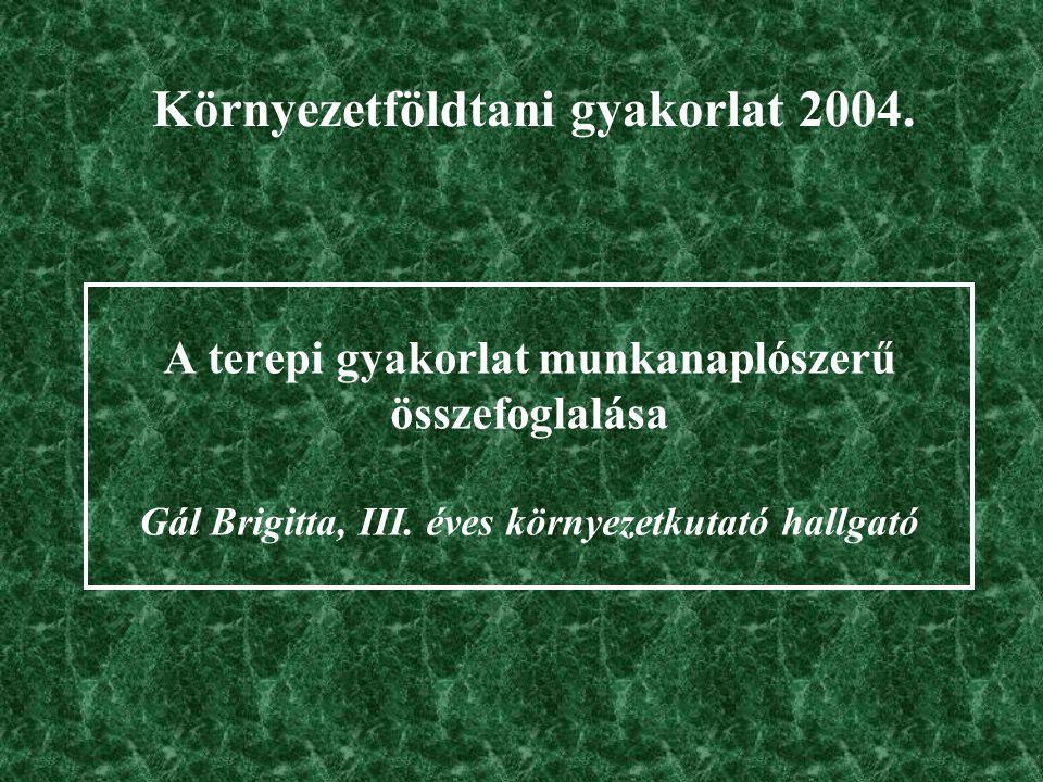 A terepi gyakorlat munkanaplószerű összefoglalása Gál Brigitta, III.