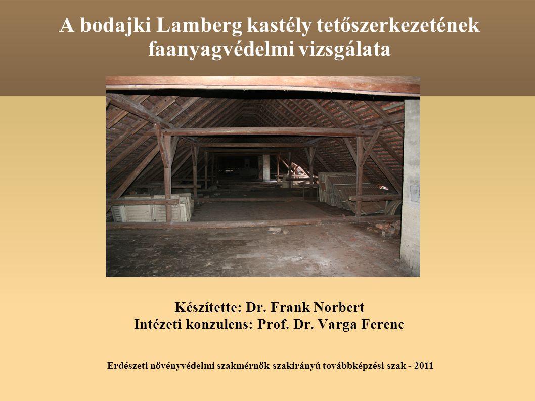 A bodajki Lamberg kastély tetőszerkezetének faanyagvédelmi vizsgálata Készítette: Dr.