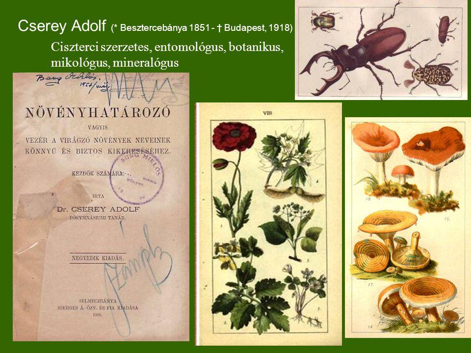 Cserey Adolf (* Besztercebánya 1851 - † Budapest, 1918) Ciszterci szerzetes, entomológus, botanikus, mikológus, mineralógus