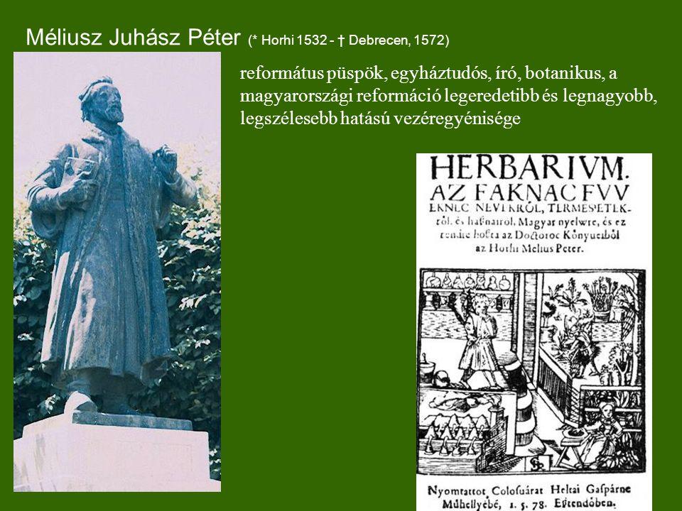 Méliusz Juhász Péter (* Horhi 1532 - † Debrecen, 1572) református püspök, egyháztudós, író, botanikus, a magyarországi reformáció legeredetibb és legnagyobb, legszélesebb hatású vezéregyénisége