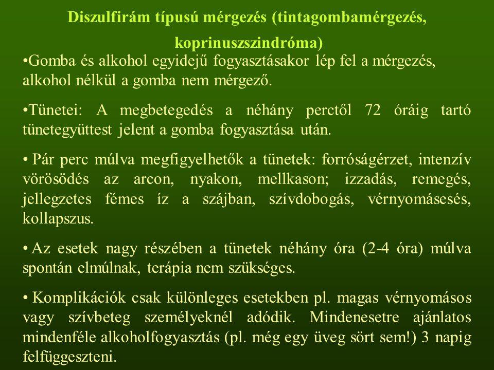 Diszulfirám típusú mérgezés (tintagombamérgezés, koprinuszszindróma) Gomba és alkohol egyidejű fogyasztásakor lép fel a mérgezés, alkohol nélkül a gom