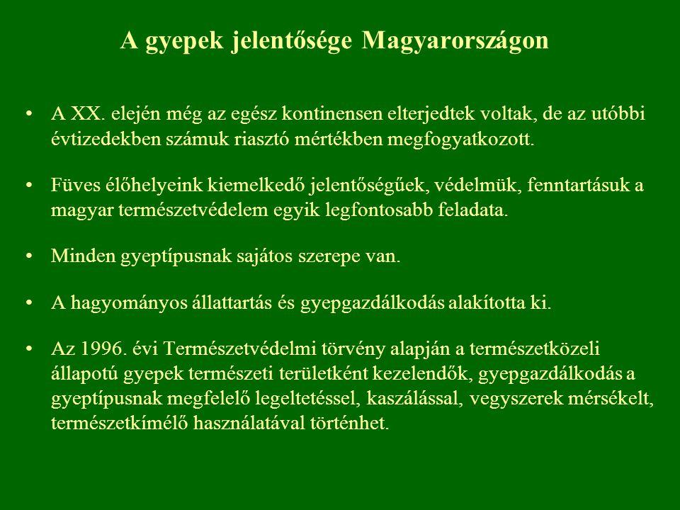 A gyepek jelentősége Magyarországon A XX. elején még az egész kontinensen elterjedtek voltak, de az utóbbi évtizedekben számuk riasztó mértékben megfo