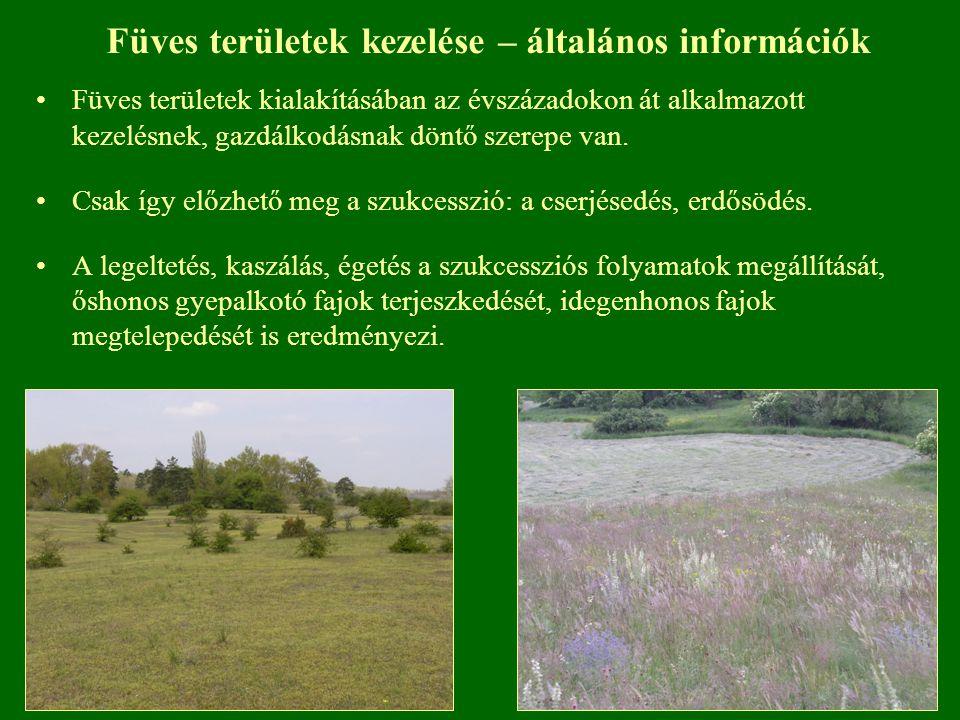 Füves területek kezelése – általános információk Füves területek kialakításában az évszázadokon át alkalmazott kezelésnek, gazdálkodásnak döntő szerep