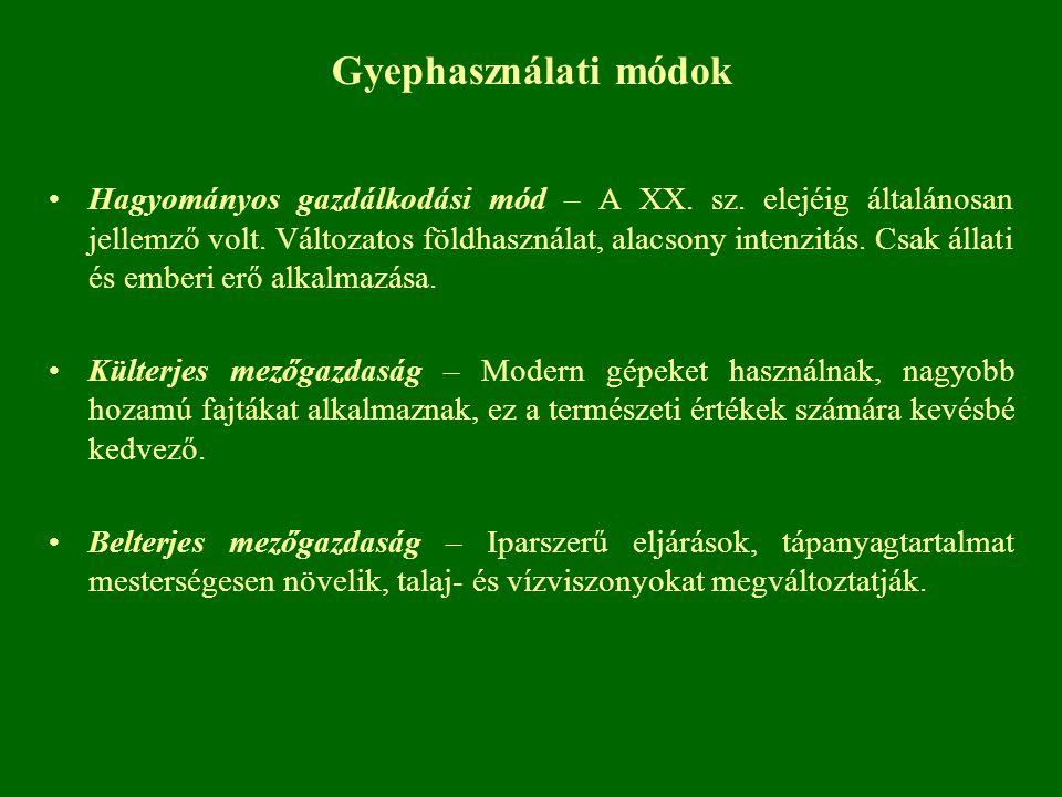 Gyephasználati módok Hagyományos gazdálkodási mód – A XX. sz. elejéig általánosan jellemző volt. Változatos földhasználat, alacsony intenzitás. Csak á