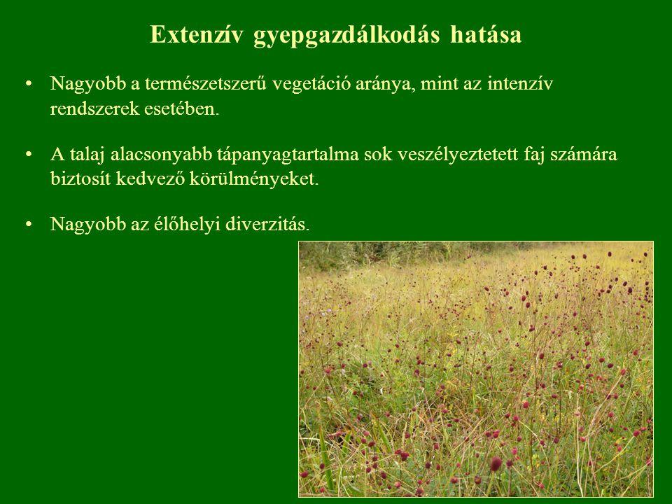 Extenzív gyepgazdálkodás hatása Nagyobb a természetszerű vegetáció aránya, mint az intenzív rendszerek esetében. A talaj alacsonyabb tápanyagtartalma