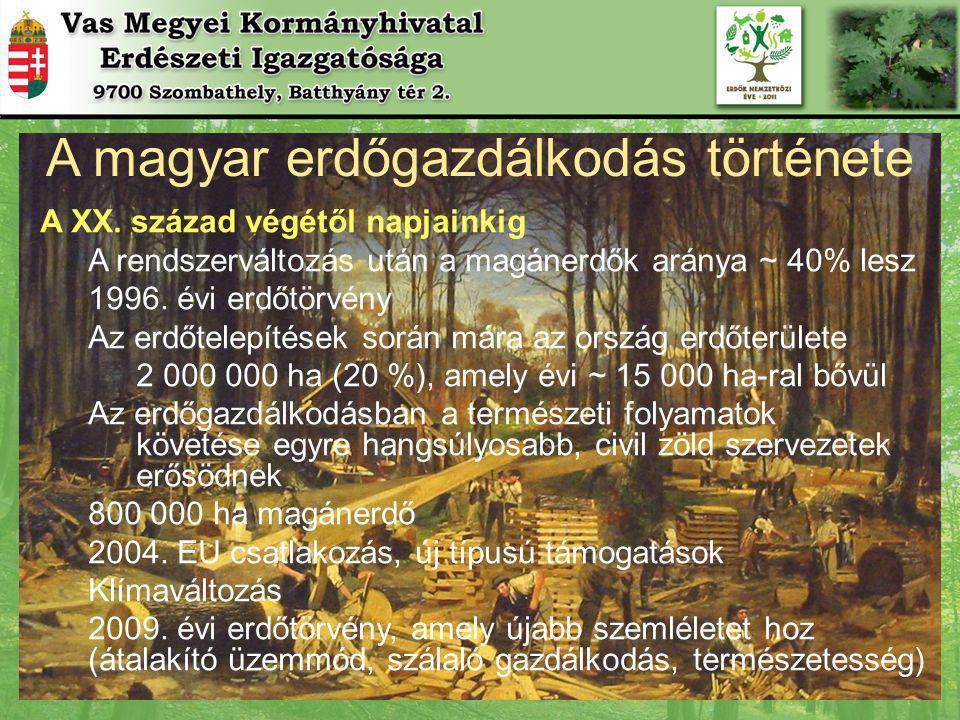 A magyar erdőgazdálkodás története A XX.