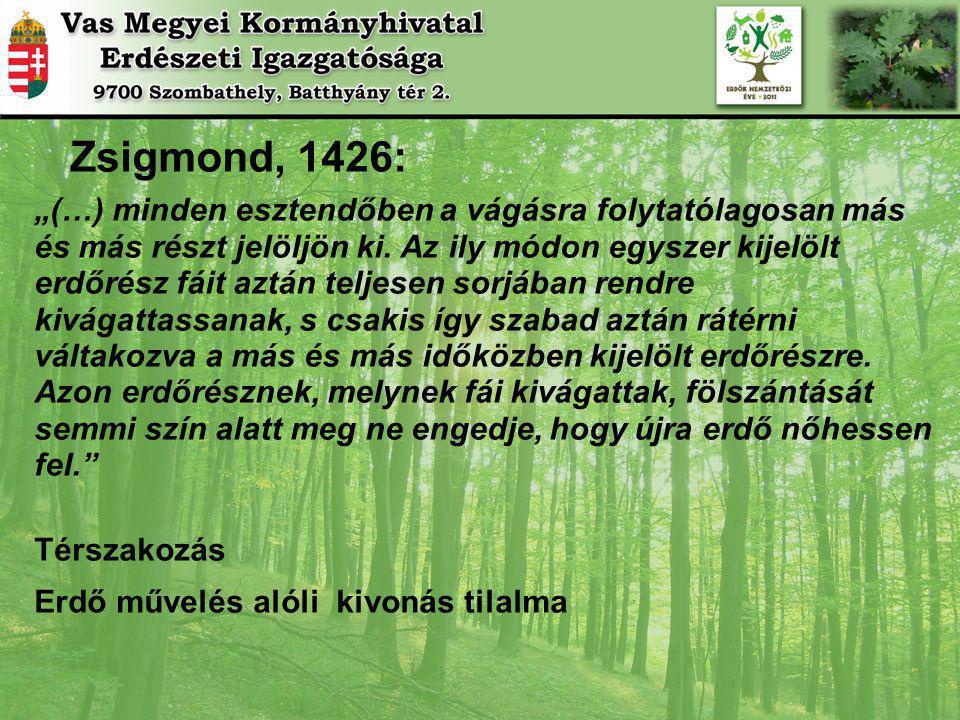 """Zsigmond, 1426: """"(…) minden esztendőben a vágásra folytatólagosan más és más részt jelöljön ki."""