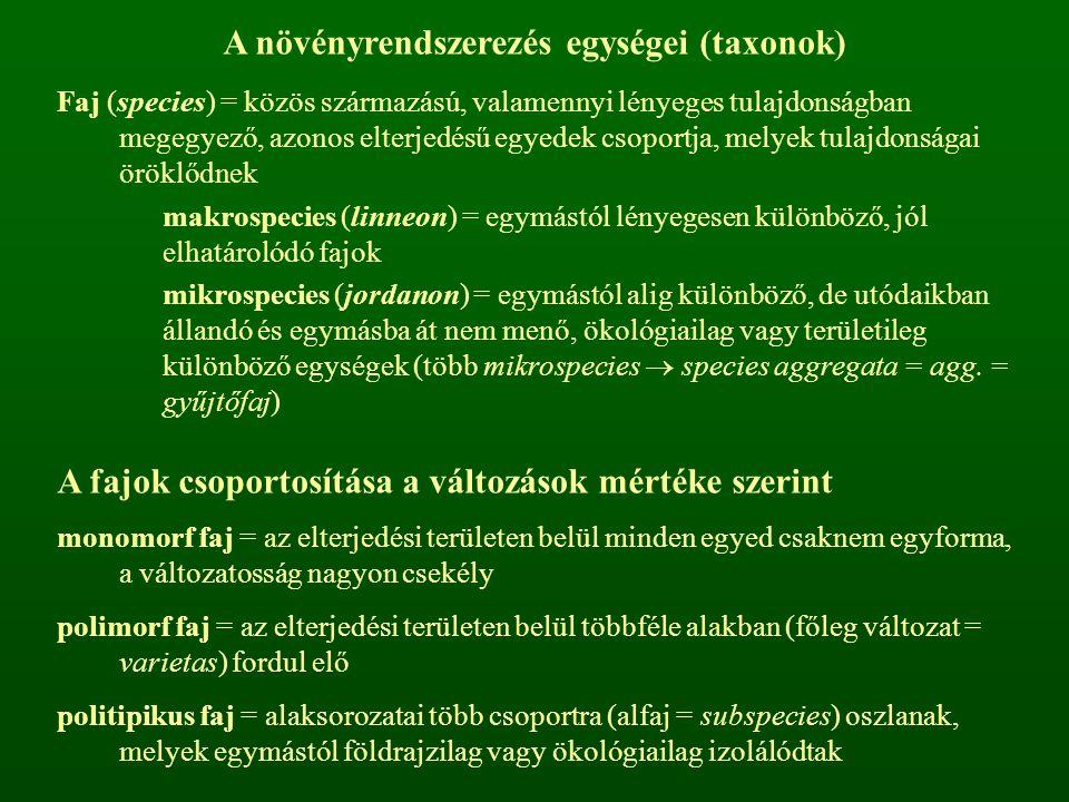 A növényrendszerezés egységei (taxonok) Faj (species) = közös származású, valamennyi lényeges tulajdonságban megegyező, azonos elterjedésű egyedek cso