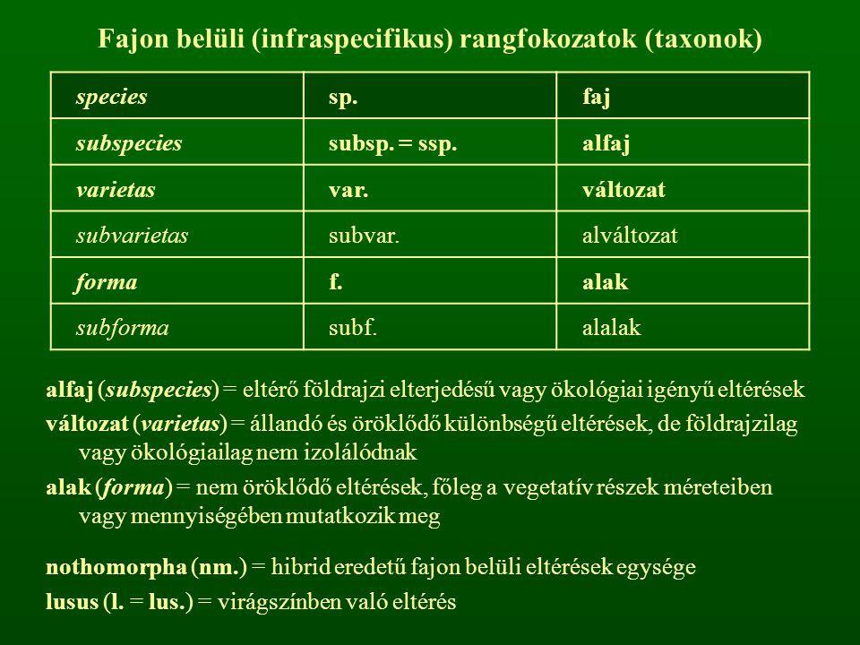 Fajon belüli (infraspecifikus) rangfokozatok (taxonok) speciessp.faj subspeciessubsp. = ssp.alfaj varietasvar.változat subvarietassubvar.alváltozat fo