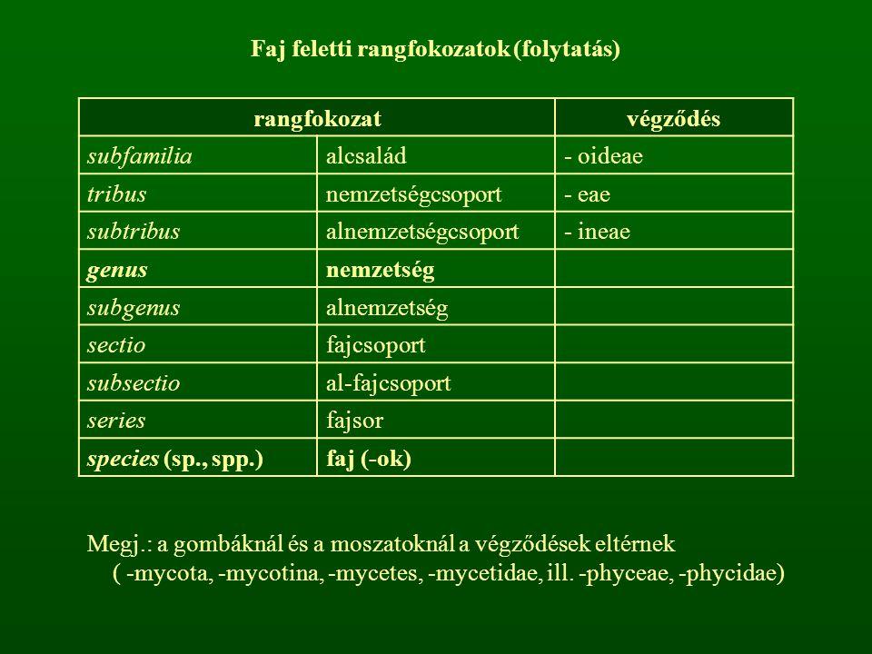 Megj.: a gombáknál és a moszatoknál a végződések eltérnek ( -mycota, -mycotina, -mycetes, -mycetidae, ill. -phyceae, -phycidae) Faj feletti rangfokoza