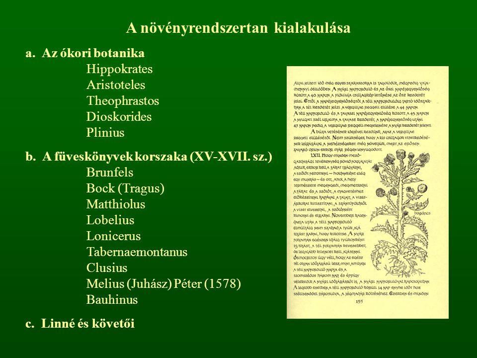 A növényrendszertan kialakulása a. Az ókori botanika Hippokrates Aristoteles Theophrastos Dioskorides Plinius b. A füveskönyvek korszaka (XV-XVII. sz.