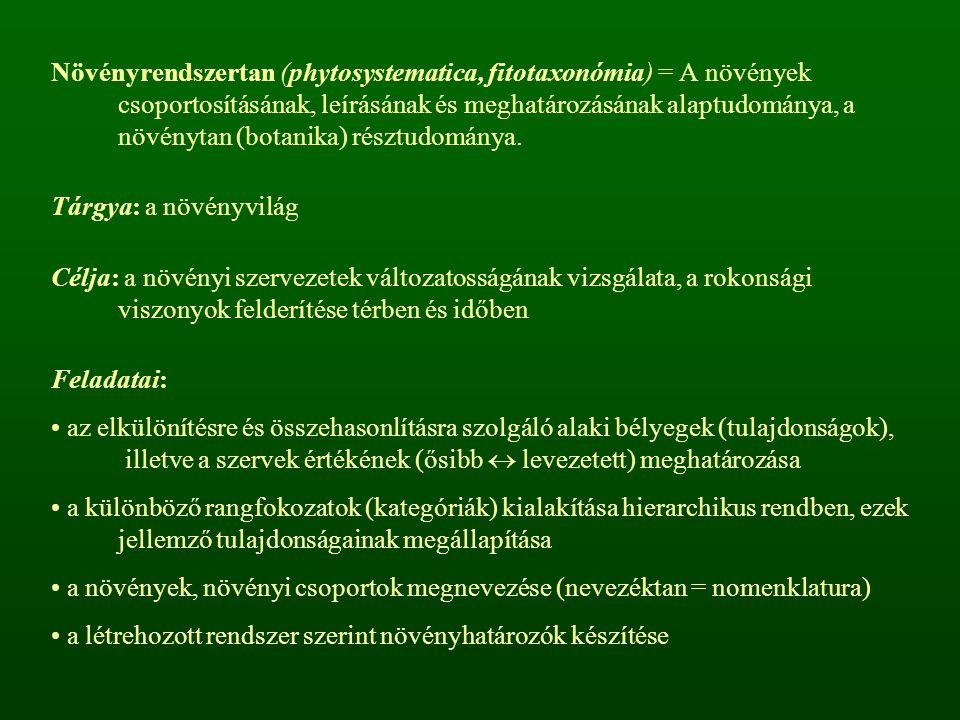 Növényrendszertan (phytosystematica, fitotaxonómia) = A növények csoportosításának, leírásának és meghatározásának alaptudománya, a növénytan (botanik