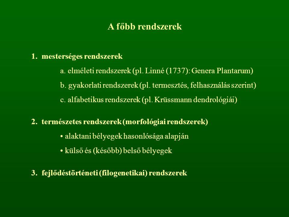 A főbb rendszerek 1. mesterséges rendszerek a. elméleti rendszerek (pl. Linné (1737): Genera Plantarum) b. gyakorlati rendszerek (pl. termesztés, felh