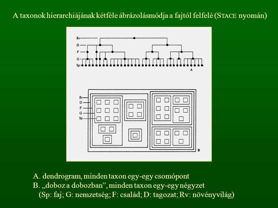 """A. dendrogram, minden taxon egy-egy csomópont B. """"doboz a dobozban"""", minden taxon egy-egy négyzet (Sp: faj; G: nemzetség; F: család; D: tagozat; Rv: n"""