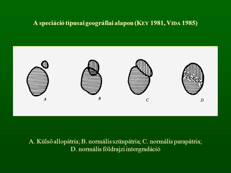 A speciáció típusai geográfiai alapon (K EY 1981, V IDA 1985) A. Külső allopátria; B. normális szünpátria; C. normális parapátria; D. normális földraj
