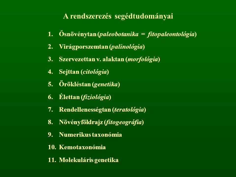 A rendszerezés segédtudományai 1.Ősnövénytan (paleobotanika = fitopaleontológia) 2.Virágporszemtan (palinológia) 3.Szervezettan v. alaktan (morfológia