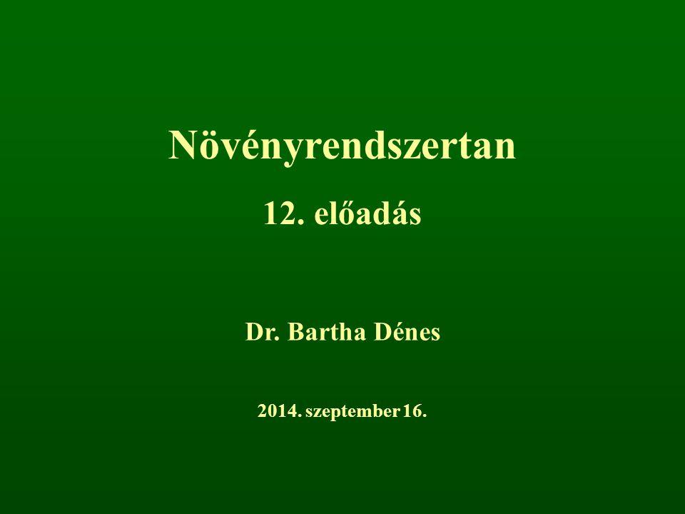Növényrendszertan 12. előadás Dr. Bartha Dénes 2014. szeptember 16.