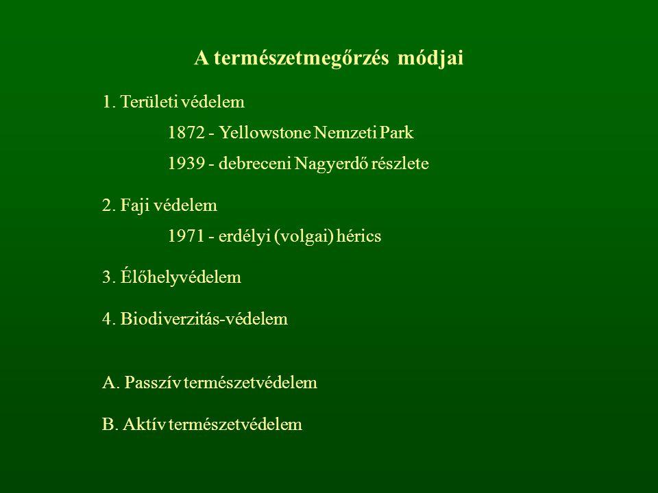 A természetmegőrzés módjai 1. Területi védelem 1872 - Yellowstone Nemzeti Park 1939 - debreceni Nagyerdő részlete 2. Faji védelem 1971 - erdélyi (volg
