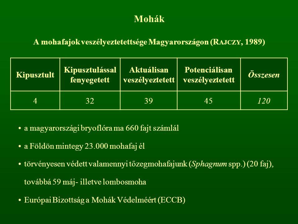 Mohák A mohafajok veszélyeztetettsége Magyarországon (R AJCZY, 1989) Kipusztult Kipusztulással fenyegetett Aktuálisan veszélyeztetett Potenciálisan ve