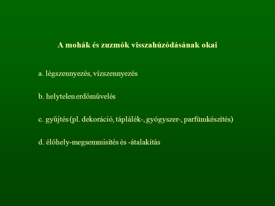 A mohák és zuzmók visszahúzódásának okai a. légszennyezés, vízszennyezés b. helytelen erdőművelés c. gyűjtés (pl. dekoráció, táplálék-, gyógyszer-, pa