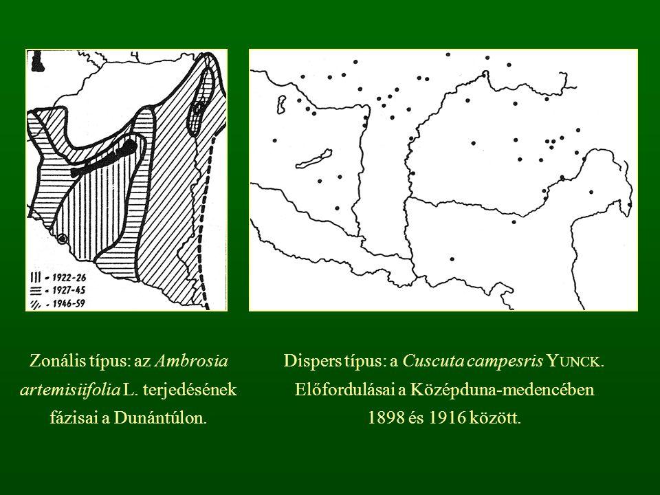 Zonális típus: az Ambrosia artemisiifolia L. terjedésének fázisai a Dunántúlon. Dispers típus: a Cuscuta campesris Y UNCK. Előfordulásai a Középduna-m