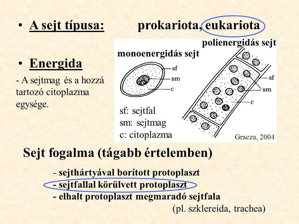 A sejt típusa:prokariota, eukariota Energida - A sejtmag és a hozzá tartozó citoplazma egysége. Sejt fogalma (tágabb értelemben) - sejthártyával borít