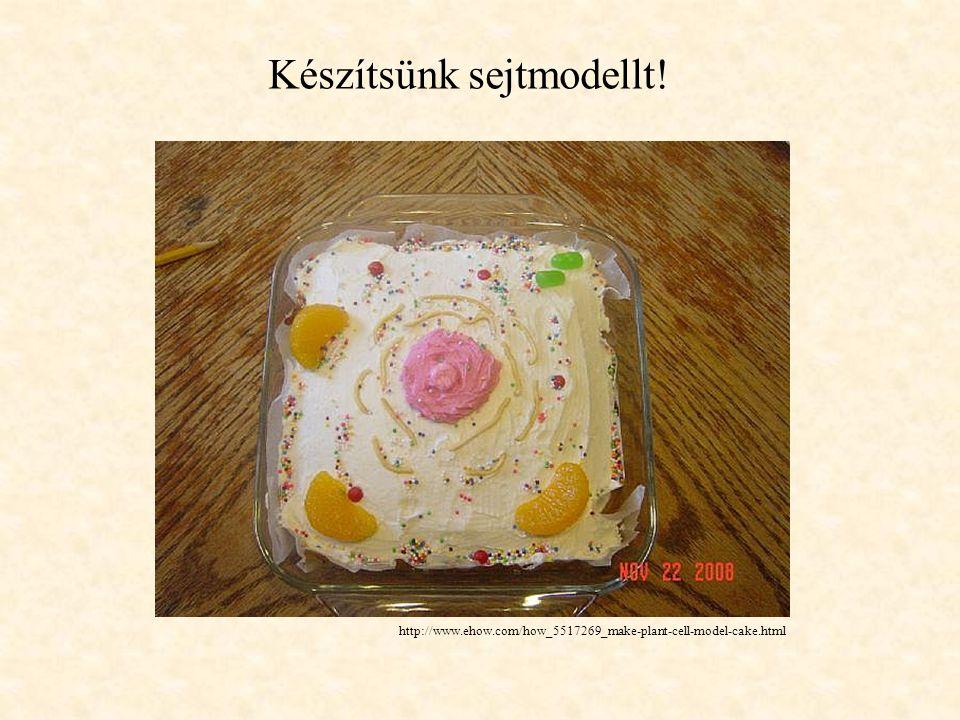 http://www.ehow.com/how_5517269_make-plant-cell-model-cake.html Készítsünk sejtmodellt!