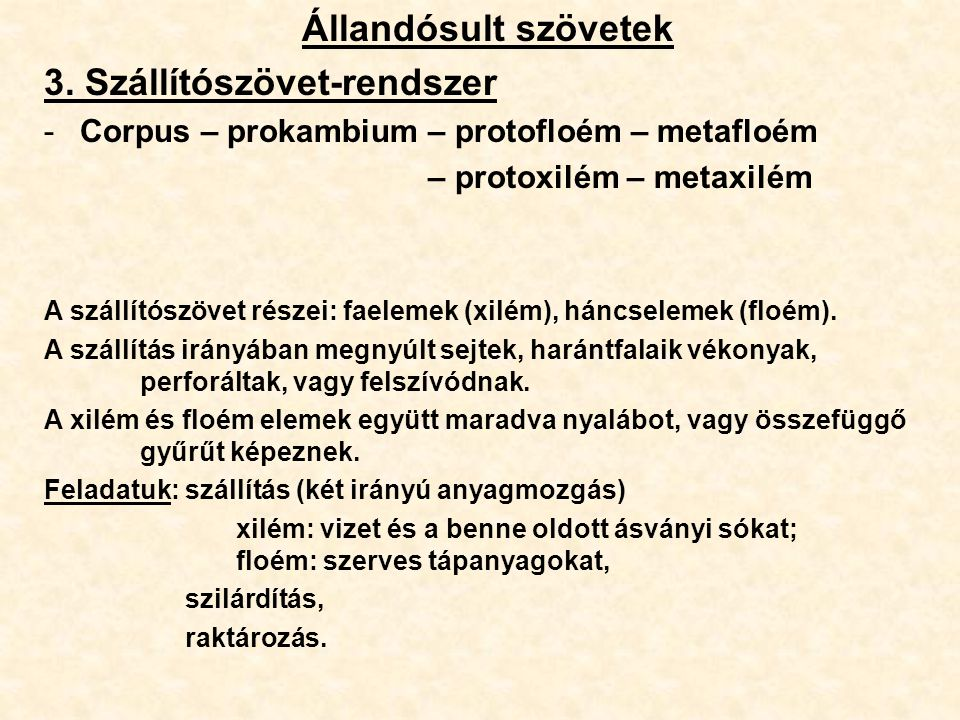 Állandósult szövetek 3. Szállítószövet-rendszer -Corpus – prokambium – protofloém – metafloém – protoxilém – metaxilém A szállítószövet részei: faelem