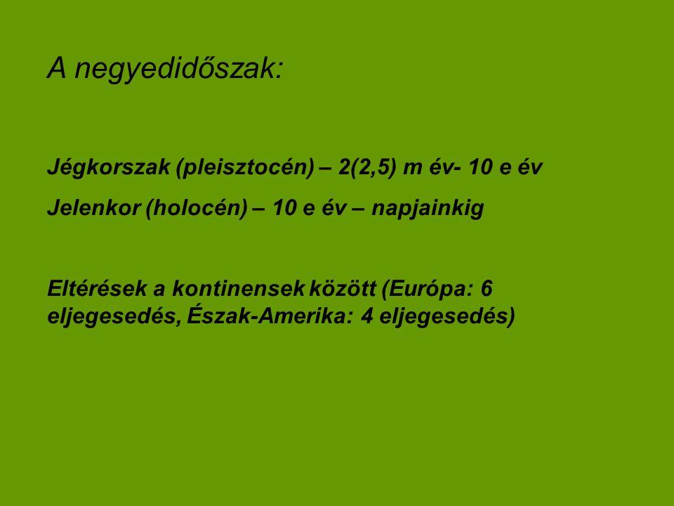 A negyedidőszak: Jégkorszak (pleisztocén) – 2(2,5) m év- 10 e év Jelenkor (holocén) – 10 e év – napjainkig Eltérések a kontinensek között (Európa: 6 e