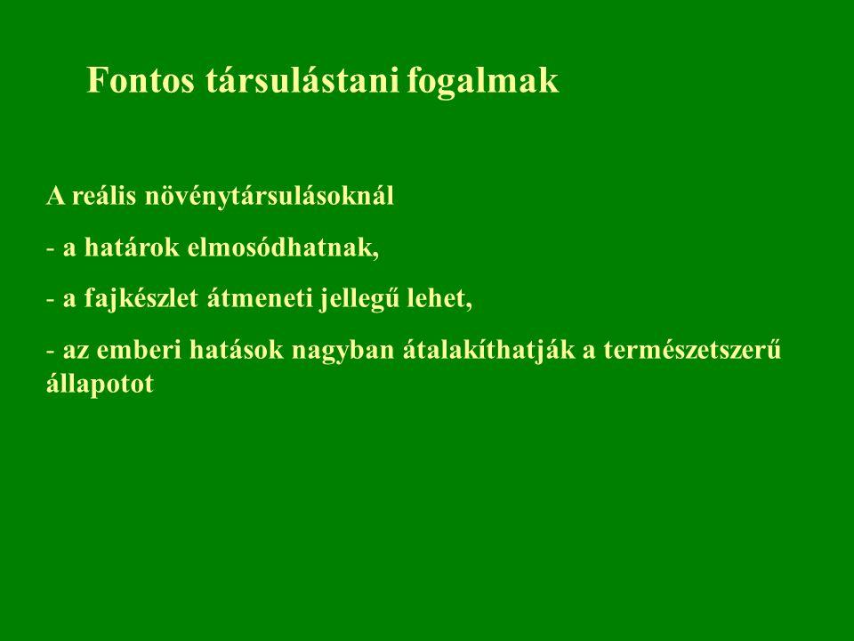 Szuperorganizmus koncepció Fontosabb képviselői: Clements Zürich-Montpellier társulástani iskola Braun-Blanquet Soó Borhidi Individualisztikus koncepció Fontosabb képviselői: Gleason