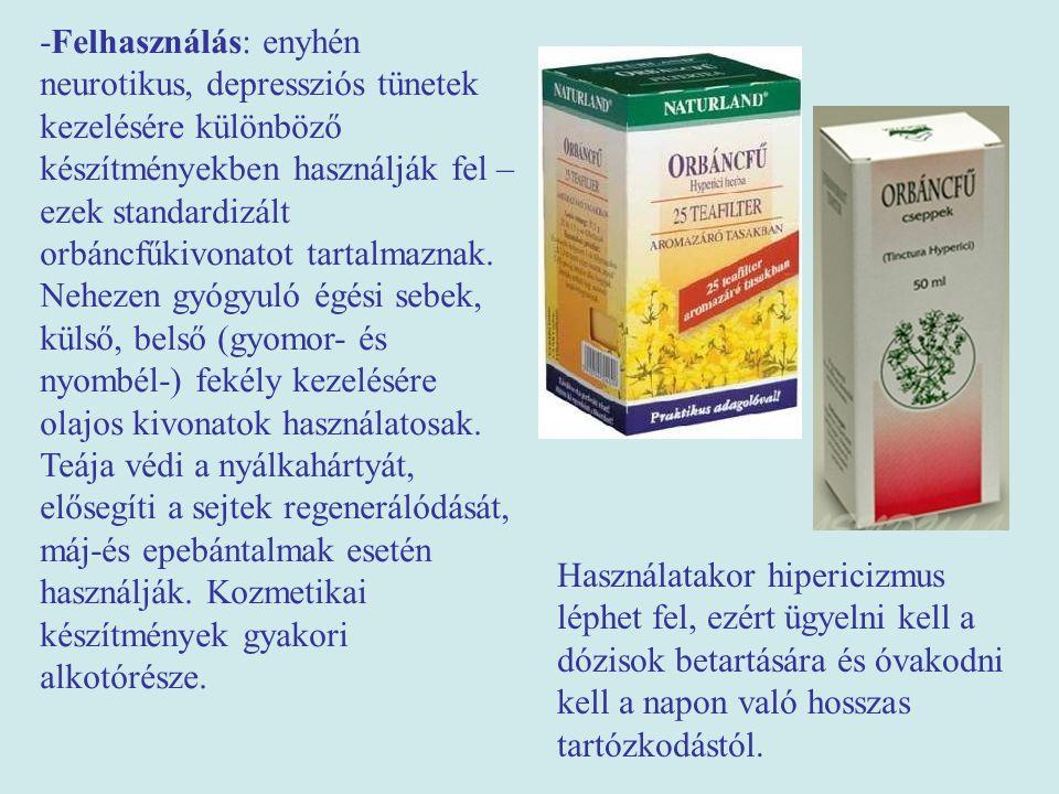 -Felhasználás: enyhén neurotikus, depressziós tünetek kezelésére különböző készítményekben használják fel – ezek standardizált orbáncfűkivonatot tartalmaznak.