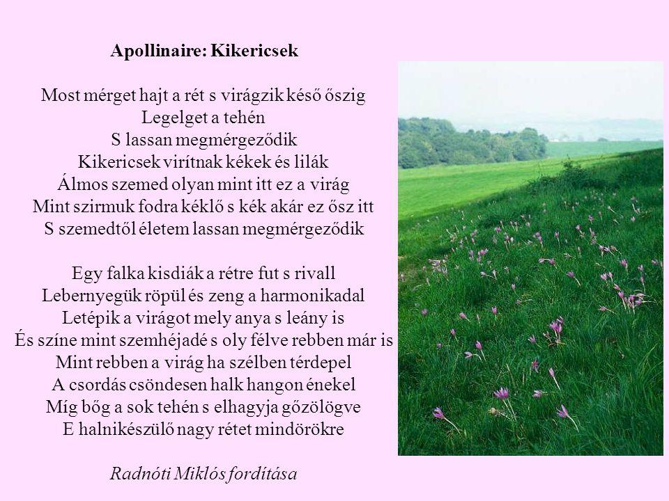 Apollinaire: Kikericsek Most mérget hajt a rét s virágzik késő őszig Legelget a tehén S lassan megmérgeződik Kikericsek virítnak kékek és lilák Álmos