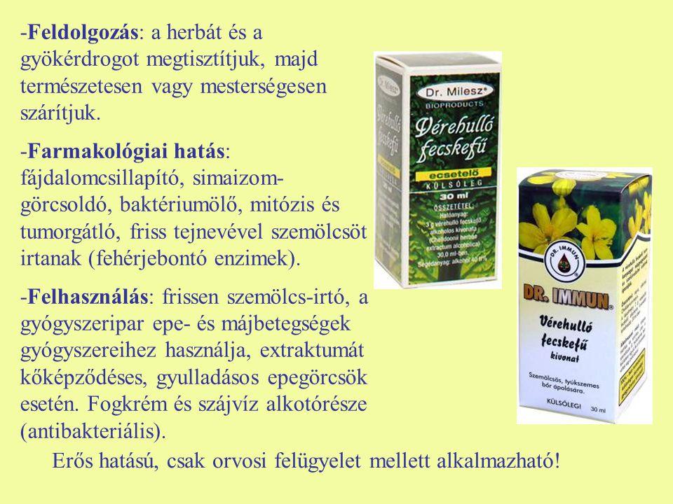 -Feldolgozás: a herbát és a gyökérdrogot megtisztítjuk, majd természetesen vagy mesterségesen szárítjuk. -Farmakológiai hatás: fájdalomcsillapító, sim