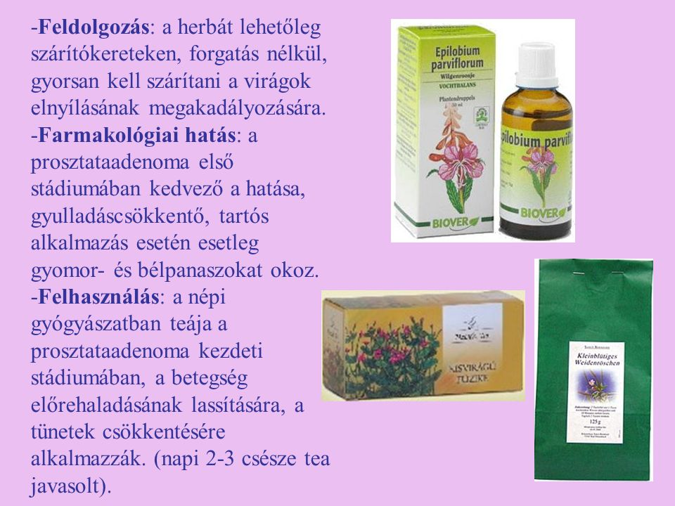 -Feldolgozás: a herbát lehetőleg szárítókereteken, forgatás nélkül, gyorsan kell szárítani a virágok elnyílásának megakadályozására. -Farmakológiai ha