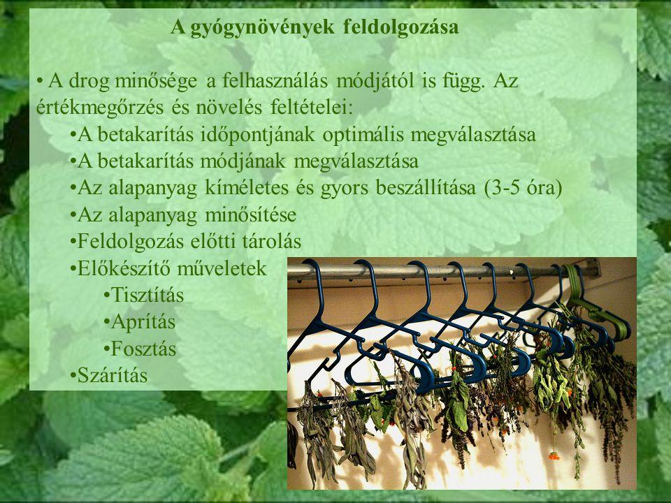 A gyógynövények feldolgozása A drog minősége a felhasználás módjától is függ.