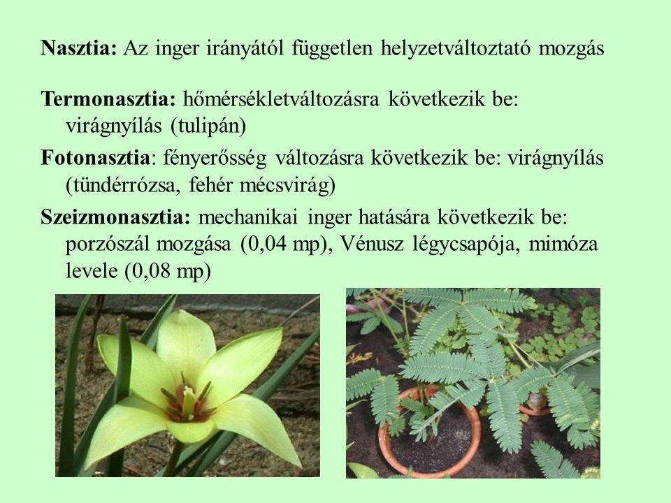 Nasztia: Az inger irányától független helyzetváltoztató mozgás Termonasztia: hőmérsékletváltozásra következik be: virágnyílás (tulipán) Fotonasztia: fényerősség változásra következik be: virágnyílás (tündérrózsa, fehér mécsvirág) Szeizmonasztia: mechanikai inger hatására következik be: porzószál mozgása (0,04 mp), Vénusz légycsapója, mimóza levele (0,08 mp)
