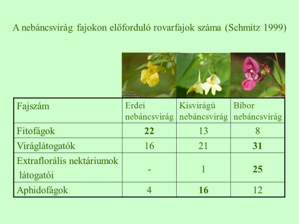 Fajszám Erdei nebáncsvirág Kisvirágú nebáncsvirág Bíbor nebáncsvirág Fitofágok22138 Viráglátogatók162131 Extraflorális nektáriumok látogatói -125 Aphi