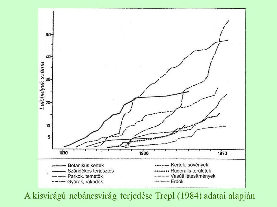 A kisvirágú nebáncsvirág terjedése Trepl (1984) adatai alapján
