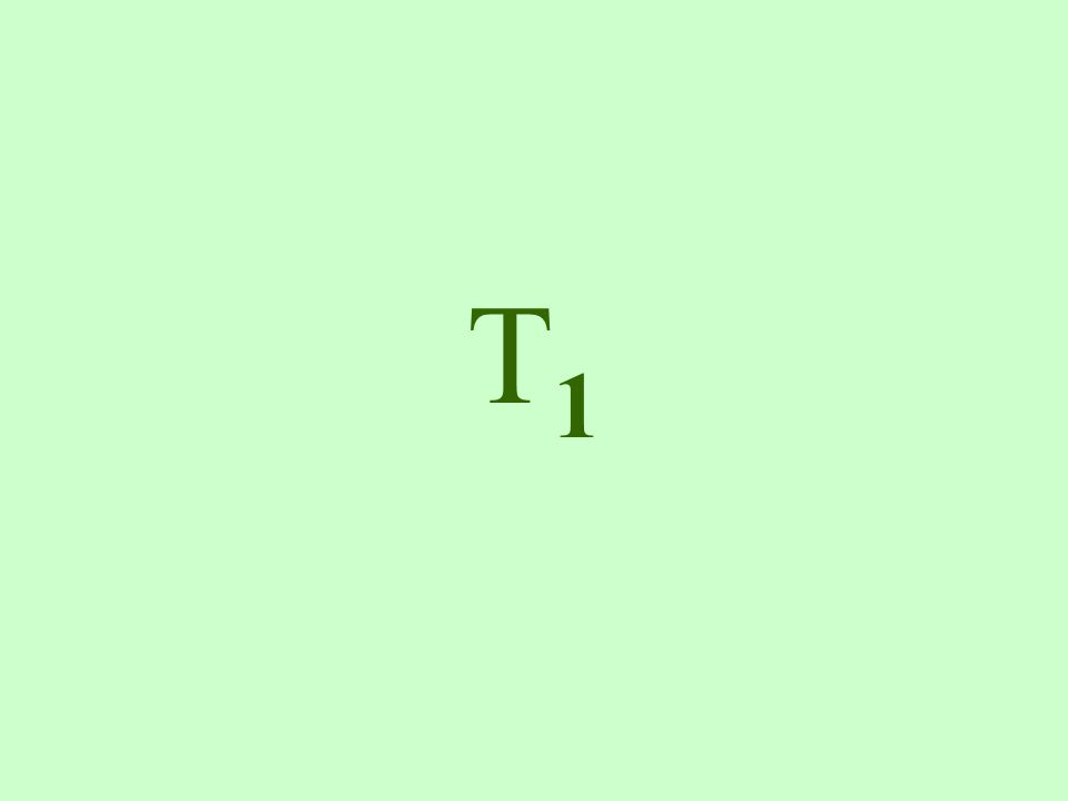 T1T1 Lamium amplexicaule – bársonyos árvacsalán