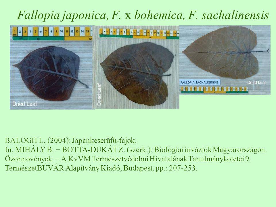 Fallopia japonica, F. x bohemica, F. sachalinensis BALOGH L. (2004): Japánkeserűfű-fajok. In: MIHÁLY B. − BOTTA-DUKÁT Z. (szerk.): Biológiai inváziók