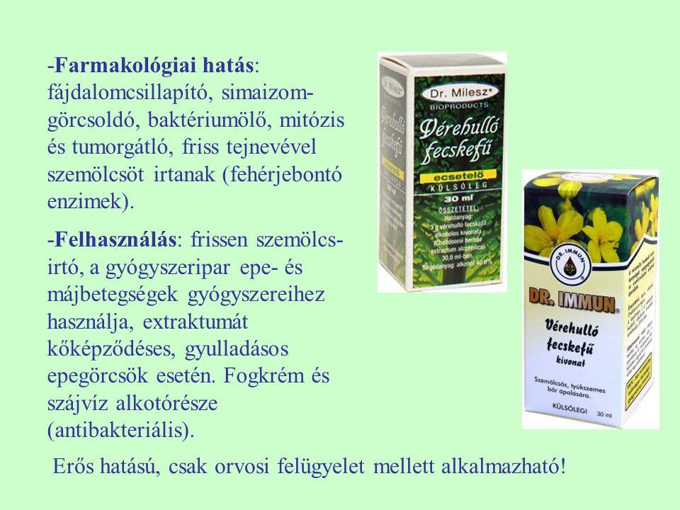 -Farmakológiai hatás: fájdalomcsillapító, simaizom- görcsoldó, baktériumölő, mitózis és tumorgátló, friss tejnevével szemölcsöt irtanak (fehérjebontó enzimek).