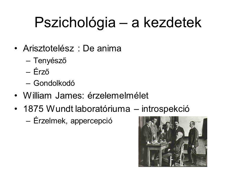 Pszichológia alapok 1.Kezdetek 2.Behaviorizmus 3.Gestalt 4.Humanisztikusok 5.Pszichoanalízis 6.Kognitív pszichológia