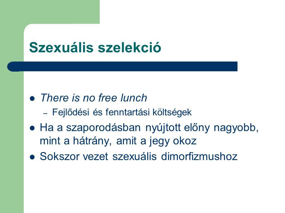 Szexuális szelekció There is no free lunch – Fejlődési és fenntartási költségek Ha a szaporodásban nyújtott előny nagyobb, mint a hátrány, amit a jegy