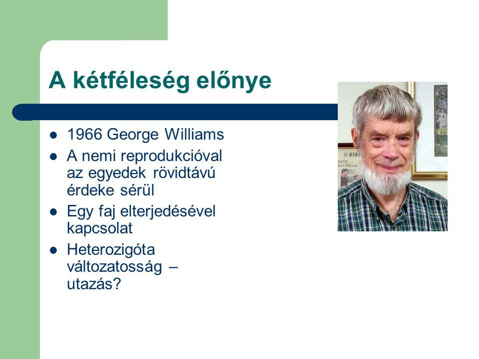 A kétféleség előnye 1966 George Williams A nemi reprodukcióval az egyedek rövidtávú érdeke sérül Egy faj elterjedésével kapcsolat Heterozigóta változa