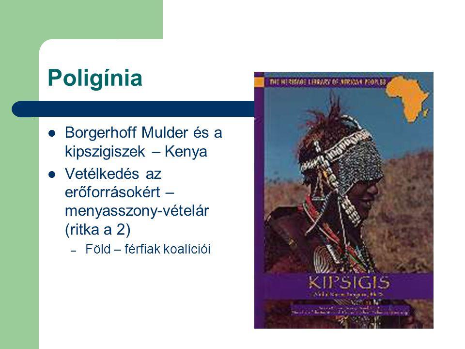 Poligínia Borgerhoff Mulder és a kipszigiszek – Kenya Vetélkedés az erőforrásokért – menyasszony-vételár (ritka a 2) – Föld – férfiak koalíciói