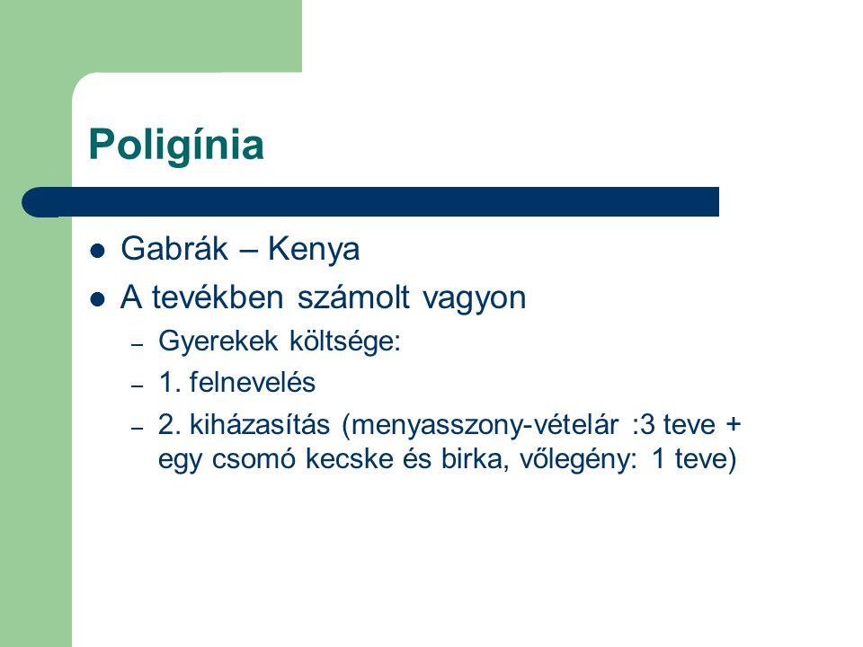 Poligínia Gabrák – Kenya A tevékben számolt vagyon – Gyerekek költsége: – 1. felnevelés – 2. kiházasítás (menyasszony-vételár :3 teve + egy csomó kecs